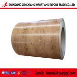 Modèle de bois d'acier galvanisé prélaqué Gi/PPGI