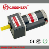 6W 60mm DC Gear Motor