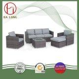 高品質のヨーロッパの柳細工の屋外の藤の家具の庭の部門別の余暇のソファー