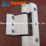 Profilo di alluminio naturale per la cerniera di portello della finestra