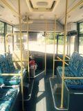 Nieuw-ontworpen Interlokale Bussen 26 van Chassis JAC Minibus Seater