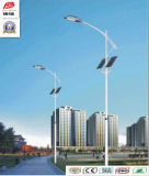 Wbr113 30W Single Lamp Solar LED Street Light