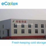 Armazenamento de mantimento fresco do Refrigeration da baixa temperatura de capacidade elevada de grande escala para o alimento