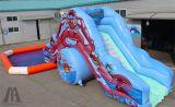 Glisseur gonflable de l'eau avec la piscine