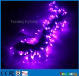 100 de Purpere Kleur 10m van de Koorden van de Decoratie van het Huwelijk van de LEIDENE Lichten van de Fee