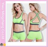 2016 nuevo de la venta espalda cruzada sin fisuras de ropa interior femenina conjunto de yoga