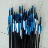Los ejes de la flecha de fibra de vidrio