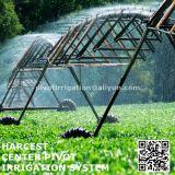 Cubierta de rectángulo de la torre del estilo de Lindsay para el sistema de irrigación de centro del pivote