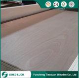 La melamina excelente del grado hizo frente a la madera contrachapada comercial de Okoume para los muebles 1220X2440m m