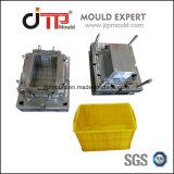 Fabbricazione professionale della muffa di muffa di plastica della cassa dell'iniezione