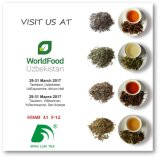 Chinesischer organischer Tee Chunmee Blatt-grüner Tee-preiswerter Tee 9366