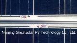 Grande poli fabbrica competitiva del comitato solare 300W diretta