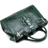 Heißer verkaufenmarkendesign-Grün-Alligatorhaut-Leder-Handbeutel mit zitiert Bescheinigung