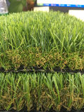 Erba del giardino, erba della decorazione, prato inglese del giardino (L40-T)