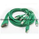 10FT Hoge cabine-HD8-Async - de Externe Kabel van dichtheidsAsync voor Cisco
