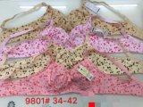 Closeout do afastamento de Stocklot do sutiã dos cuidados do sutiã de Mami do roupa interior das mulheres