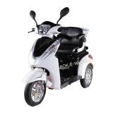 E-Fahrrad, E-Roller, elektrischer Mobilitäts-Roller, untauglicher Roller, elektrisches Fahrrad/Fahrrad