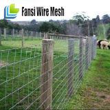 Cerco agricultural galvanizado de alta elasticidade da exploração agrícola