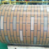 Großhandelsfarbe der baumaterial-Vollkommenheits-PPGI beschichtete galvanisierten Stahlring