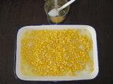 Chaud Les aliments frais de vente de grains de maïs doux en conserve en étain