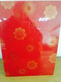 Film en PVC Feuille d'acier laminé Chauffe-eau Feuille d'acier décoratif