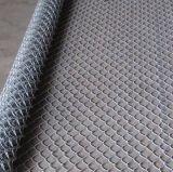 La frontière de sécurité galvanisée de maillon de chaîne (treillis métallique de diamant), PVC a enduit la frontière de sécurité de maillon de chaîne