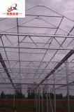 Зеленый дом с высоким качеством ПК в мастерской