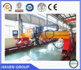 Plasma di CNC CNCDG-6000X18000 e macchina di taglio alla fiamma