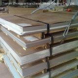 Chapa de aço inoxidável de Roled ASTM 301 principais frios/placa