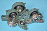 Rodamiento de acero cromado con la caja de hierro fundido de rodamiento de chumacera