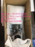 De echte 4HK1 Egr Motor van Pipingof Excvator van de Emissie (het aantal van het Deel: 8-98238247-01)