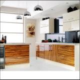 Acrylique porte MDF pour armoire de cuisine (DM9656)
