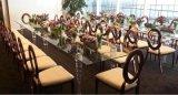 Gouden het Schilderen het Dineren van het Leer van het Titanium Witte Pu Stoel