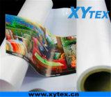 Rétroéclairé bannière PVC Flex/Roll up Banner/Outdoor Pana Flex