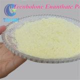 Polvere anabolica Trenbolone Enanthate degli steroidi gialli