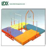 De in het groot Apparatuur van de Gymnastiek van Jonge geitjes voor de Apparatuur van de Gymnastiek van de Verkoop voor Jonge geitjes