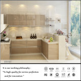 新しい現代様式のアクリルの直面された食器棚(FY521)