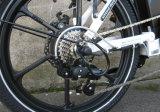 Strong электрический складной велосипед для продаж (FR-TDN13Z)