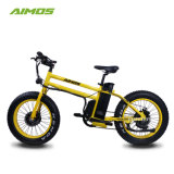 750 frein hydr.graisse du moteur arrière des pneus vélo électrique prix d'usine E Bike