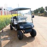 Großverkauf 6 Seaters elektrischer besichtigenStreifenwagen