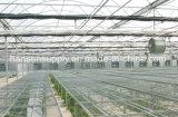 Gewächshaus-Dach-an der Wand befestigter Luftumwälzung-Absaugventilator-axialer Ventilator