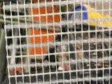 يضخّم [فيبرغلسّ] شبكة لأنّ فسيفساء وحجارة قاعدة, [0.3إكس400م/رولّ], [4إكس5مّ], [85غ/م2]