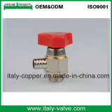 Válvula de purga de cobre amarillo niquelada de la alta precisión (AV-PV-2008)