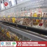 Huevo de Argelia/jaula de baterías de la granja de pollo de la capa para las ponedoras