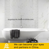 Vitrage pierre pleine de marbre poli au carrelage blanc Calacatta 600*600mm--un