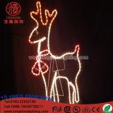 Noël Santa de DEL Ligthing sur la bicyclette avec la lumière de décoration de Chriatmas de motif de contrôleur