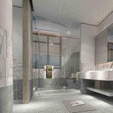 De matte Verglaasde Binnenlandse Ceramische Tegel van de Muur voor Badkamers met ISO