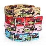 2018 Halsband van de Camouflage van de Levering van het Product van het Huisdier van Amaon Ebay de Nieuwe