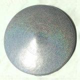 Pigmento holográfico do MERGULHO de prata do pulverizador do revestimento de Plasti do Glitter de Holo