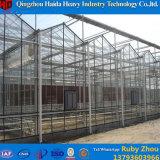 Парник земледелия коммерчески используемый овощем стеклянный